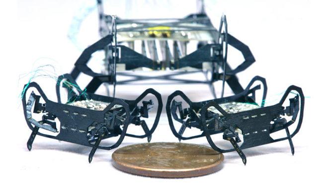 HAMR-JR robot